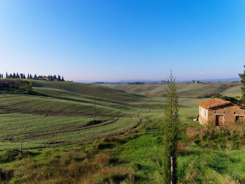 Siena - part 1